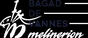 BAGAD-LOGOS-AVECHERM-v6